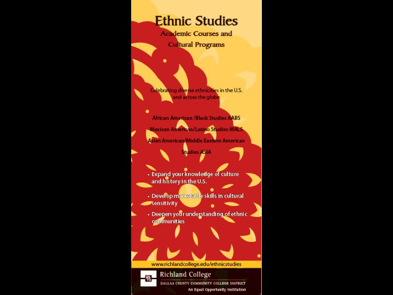 ethnic studies Ethnic studies [ undergraduate program | courses | faculty] all courses, faculty listings, and curricular and degree requirements described herein are subject to.